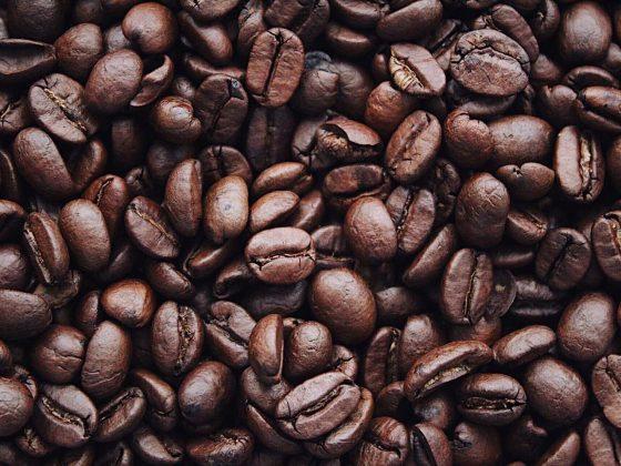 Ilustrasi biji kopi