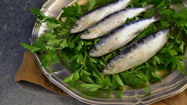 ilustrasi ikan sarden di atas piring